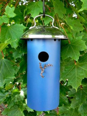 Small Bird House 15BH