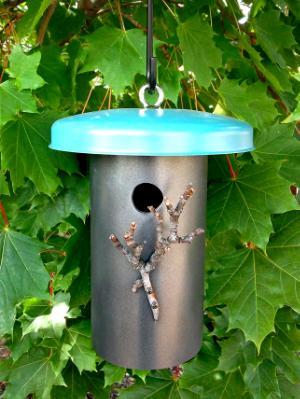 Small Bird House 09BH